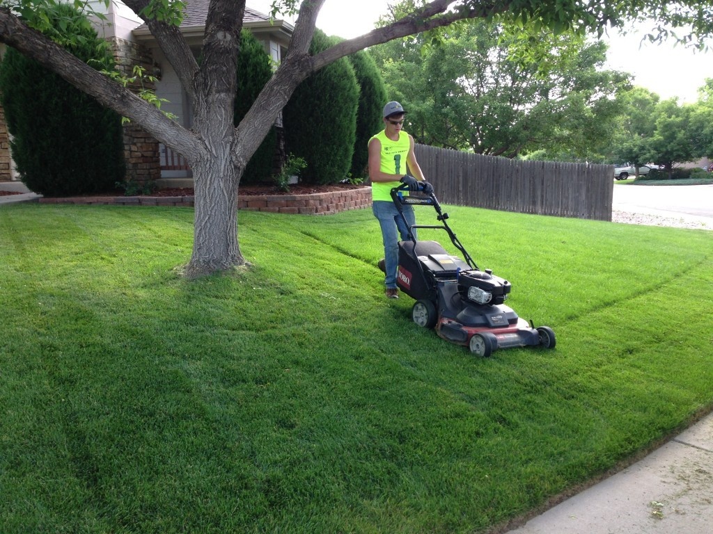 Lawn Service-League City TX Landscape Designs & Outdoor Living Areas-We offer Landscape Design, Outdoor Patios & Pergolas, Outdoor Living Spaces, Stonescapes, Residential & Commercial Landscaping, Irrigation Installation & Repairs, Drainage Systems, Landscape Lighting, Outdoor Living Spaces, Tree Service, Lawn Service, and more.